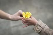 دست های مهربان بازنشستگان