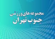 مجموعه های ورزشی جنوب تهران