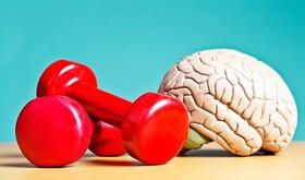 سی دقیقه فعالیت بدنی روزانه و تاثیرات بی نظیر آن روی مغز!