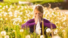چطور می توان علائم آلرژی پاییزی را کاهش داد؟