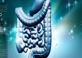 از 8 باور غلط درباره سلامت دستگاه گوارش، دور بمانید