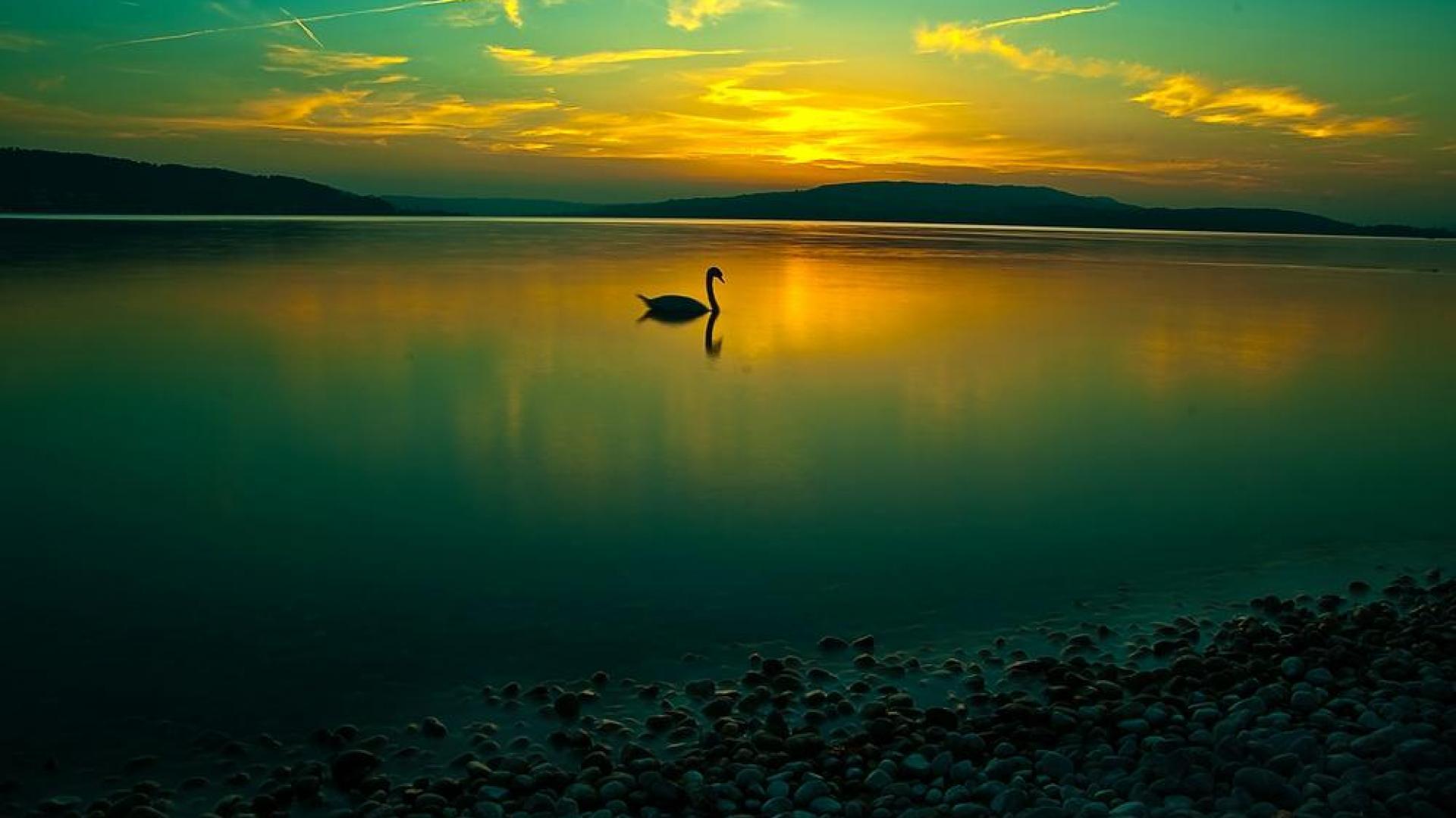 معجون آرامش