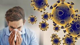 هرگونه علائم سرماخوردگی باید کرونا تصور شود !