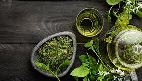 بهترین گیاهان برای افزایش انرژی و تمرکز در پاییز