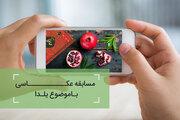 اسامی برگزیدگان مسابقه عکس یلدا اعلام شد