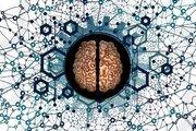 تاثیر سن نیمکره چپ و راست مغز بر آلزایمر