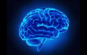 فعال نگه داشتن حافظه با افزایش سن